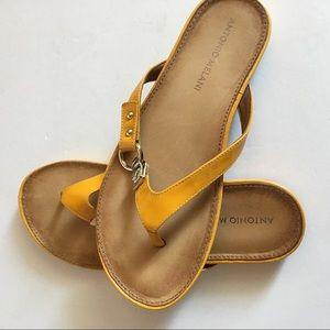 Antonio Melani CALLA Flip-flops Thong Sandals SZ 7